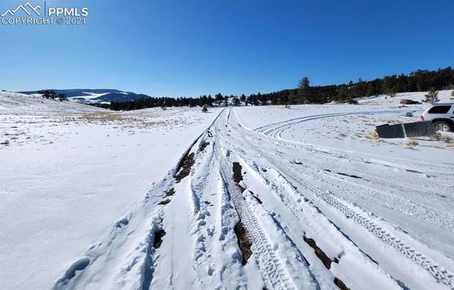 11 Olander Trail, Guffey, CO 80820 (#3161427) :: The Treasure Davis Team | eXp Realty