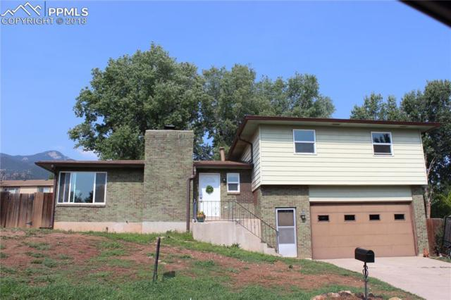 310 Clarksley Road, Manitou Springs, CO 80829 (#3163932) :: Action Team Realty