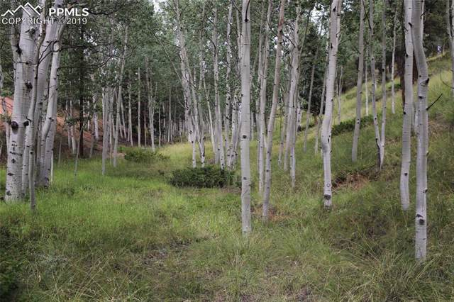 54 Eagle Drive, Divide, CO 80814 (#3169744) :: 8z Real Estate