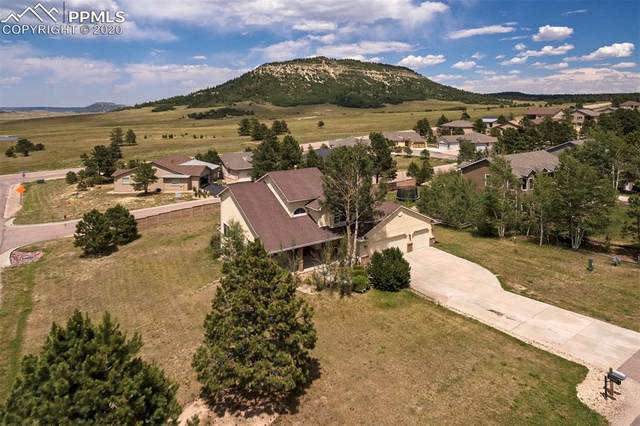 20385 True Vista Circle, Monument, CO 80132 (#3174139) :: Tommy Daly Home Team
