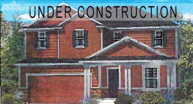 488 Tippen Place, Castle Rock, CO 80104 (#3175077) :: 8z Real Estate