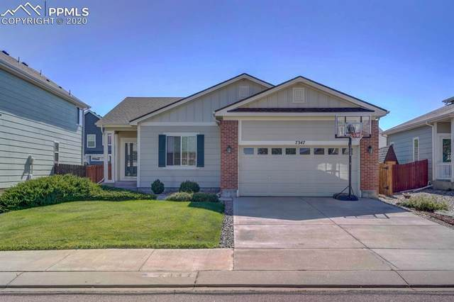 7347 Brush Hollow Drive, Fountain, CO 80817 (#3175822) :: 8z Real Estate