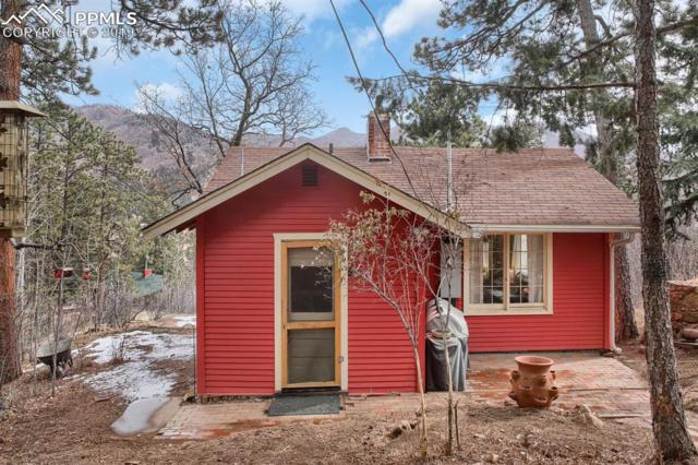 9560 Mountain Road, Cascade, CO 80809 (#3178360) :: Perfect Properties powered by HomeTrackR