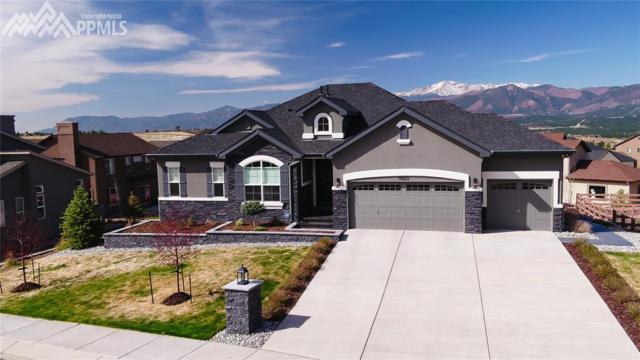 13622 Fife Court, Colorado Springs, CO 80921 (#3181570) :: The Treasure Davis Team