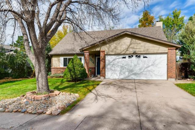 3650 Brisbane Drive, Colorado Springs, CO 80920 (#3184521) :: 8z Real Estate