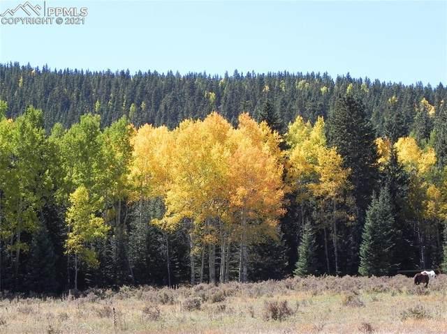 TBD Rhyolite Mountain Mesa Road, Cripple Creek, CO 80813 (#3185904) :: Hudson Stonegate Team