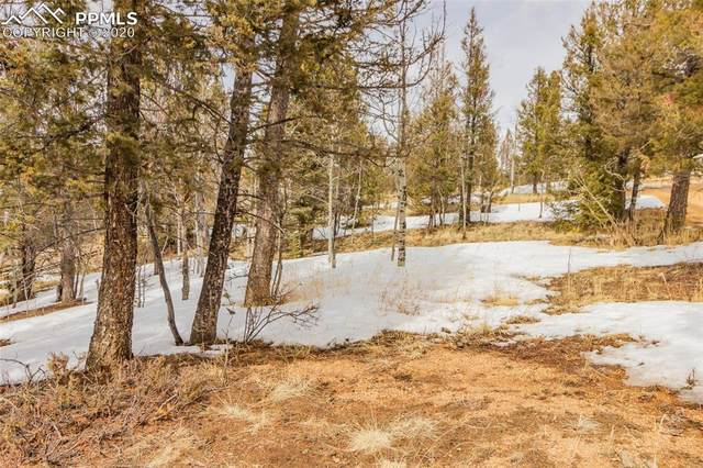 52 Columbine Road, Woodland Park, CO 80863 (#3188134) :: Finch & Gable Real Estate Co.