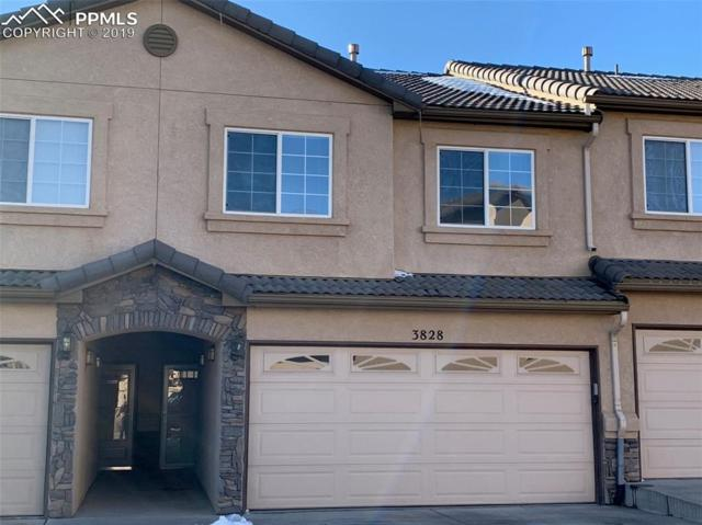 3828 Packers Point, Colorado Springs, CO 80906 (#3188536) :: 8z Real Estate