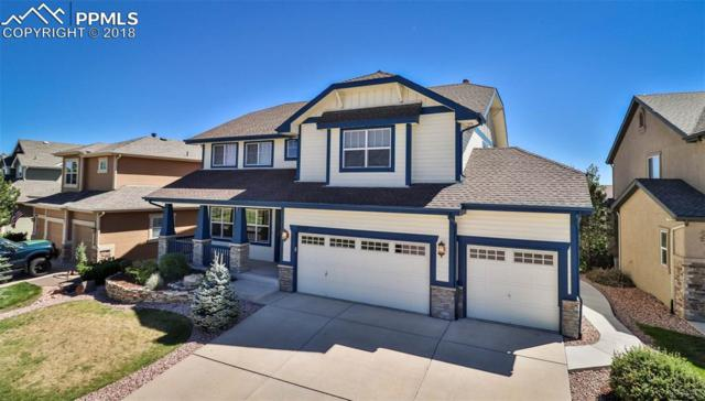 5537 Prima Lane, Colorado Springs, CO 80924 (#3191468) :: The Daniels Team