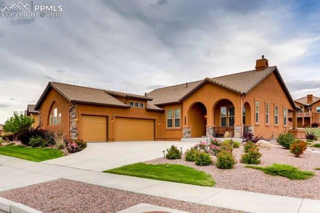 13061 Penfold Drive, Colorado Springs, CO 80921 (#3195606) :: Action Team Realty