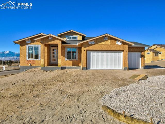 10310 Stagecoach Park Court, Colorado Springs, CO 80924 (#3198885) :: 8z Real Estate