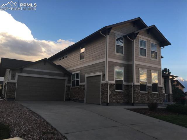 11205 Prairie Walk Terrace, Peyton, CO 80831 (#3201956) :: The Peak Properties Group