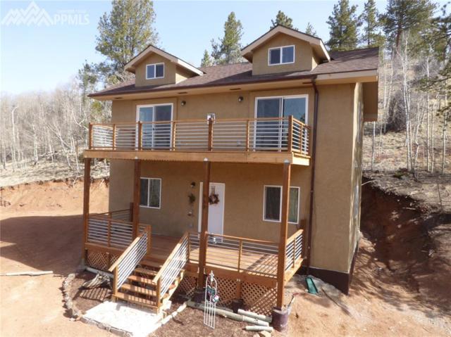 953 Yorktown Road, Cripple Creek, CO 80813 (#3205572) :: 8z Real Estate