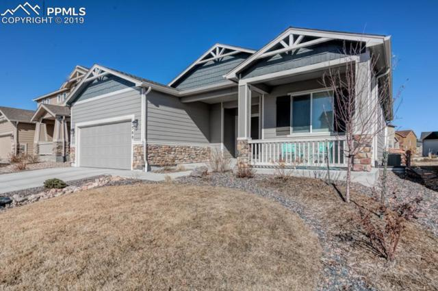5508 Leon Young Drive, Colorado Springs, CO 80924 (#3206608) :: CC Signature Group