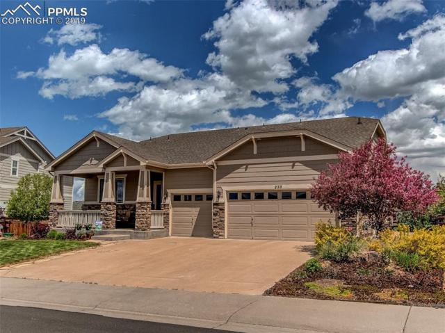 255 Crosshaven Place, Castle Rock, CO 80104 (#3230953) :: Harling Real Estate