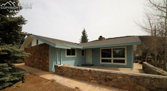 911 N Fullview Street, Woodland Park, CO 80863 (#3232971) :: Tommy Daly Home Team