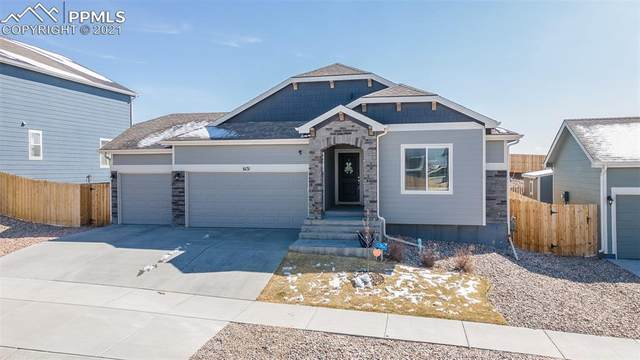 6131 Anders Ridge Lane, Colorado Springs, CO 80927 (#3235248) :: Tommy Daly Home Team