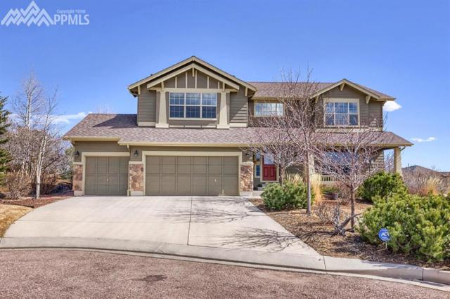 2003 Paradise Ridge Court, Colorado Springs, CO 80921 (#3236507) :: Action Team Realty
