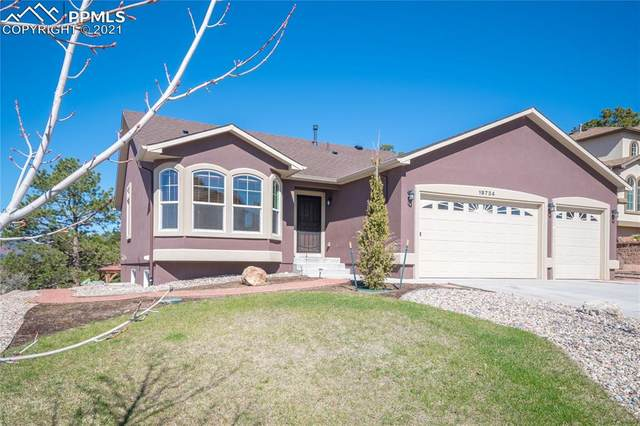 19734 Serenity Springs Point, Monument, CO 80132 (#3238641) :: Finch & Gable Real Estate Co.