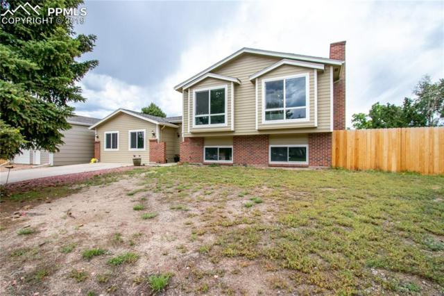 6728 Fredrick Drive, Colorado Springs, CO 80918 (#3238988) :: Colorado Team Real Estate