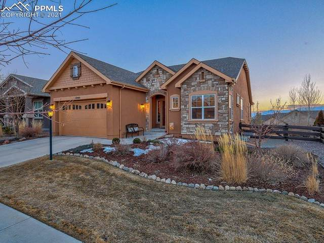 9194 Dome Rock Place, Colorado Springs, CO 80924 (#3246398) :: Re/Max Structure