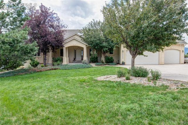 17290 Early Star Drive, Monument, CO 80132 (#3250709) :: Action Team Realty