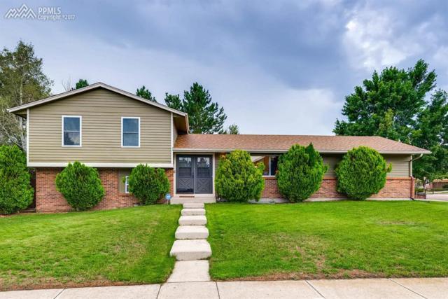 3135 Zephyr Drive, Colorado Springs, CO 80920 (#3258764) :: RE/MAX Advantage
