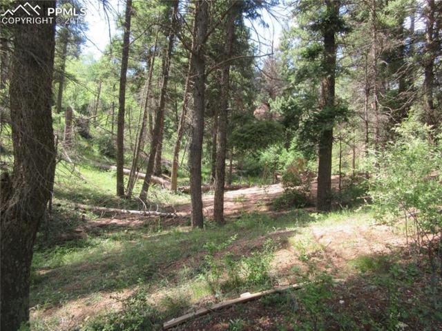 2450 Elk Park Road, Larkspur, CO 80118 (#3260304) :: 8z Real Estate