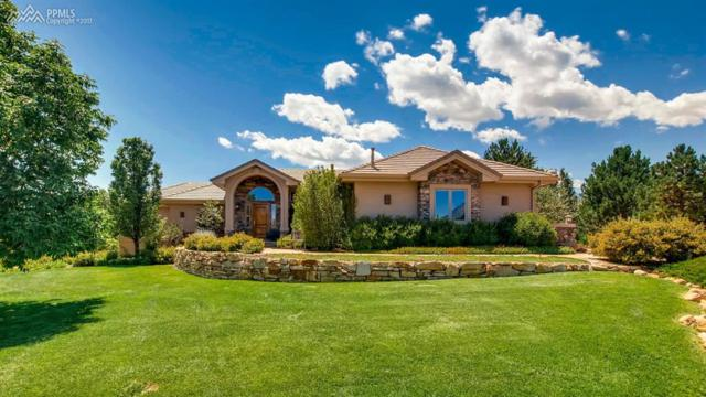 1935 Twinflower Point, Colorado Springs, CO 80904 (#3261199) :: 8z Real Estate