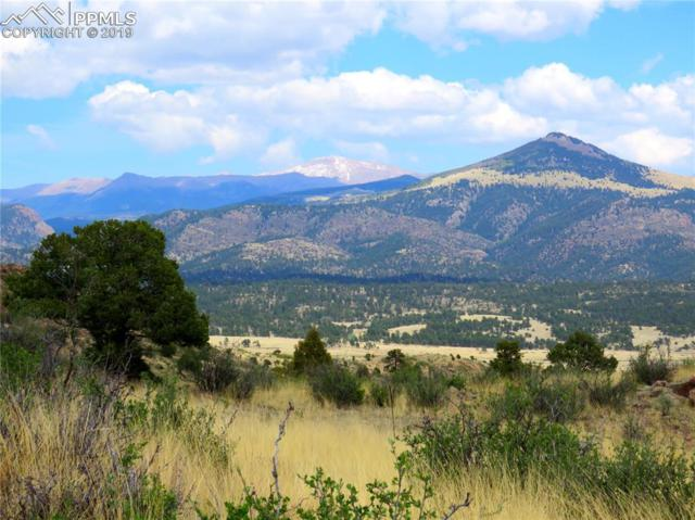 1537 Apache Trail, Florissant, CO 80816 (#3262682) :: CC Signature Group