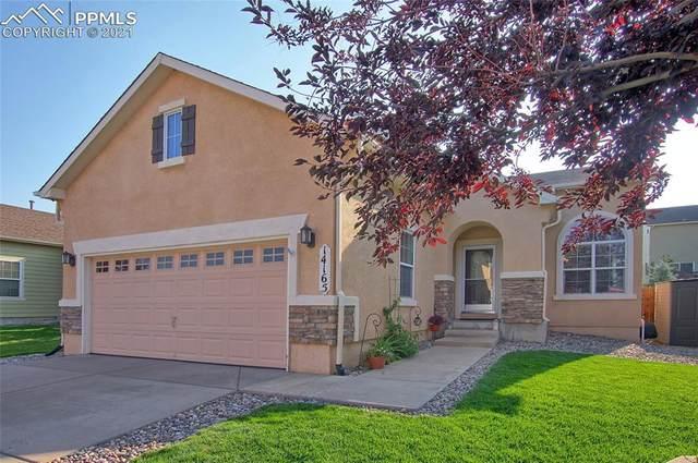 14165 Petrel Drive, Colorado Springs, CO 80921 (#3265430) :: Action Team Realty