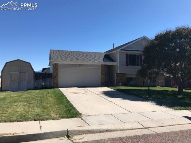 5395 Water Dipper Road, Colorado Springs, CO 80911 (#3265760) :: 8z Real Estate