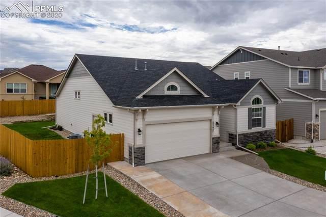 2597 Half Chaps Court, Colorado Springs, CO 80922 (#3266742) :: CC Signature Group