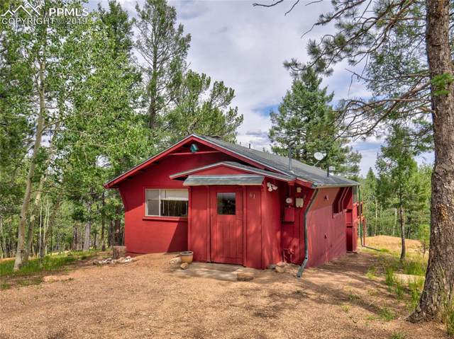 61 Hidatsa Lane, Woodland Park, CO 80863 (#3267229) :: The Treasure Davis Team