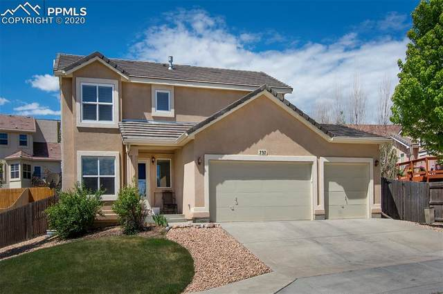 737 Rye Ridge Road, Fountain, CO 80817 (#3269293) :: 8z Real Estate