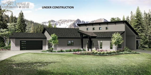 1460 Trumpeters Court, Monument, CO 80132 (#3271415) :: The Dixon Group