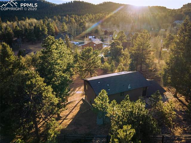 974 Blue Spruce Street, Woodland Park, CO 80863 (#3273323) :: Finch & Gable Real Estate Co.