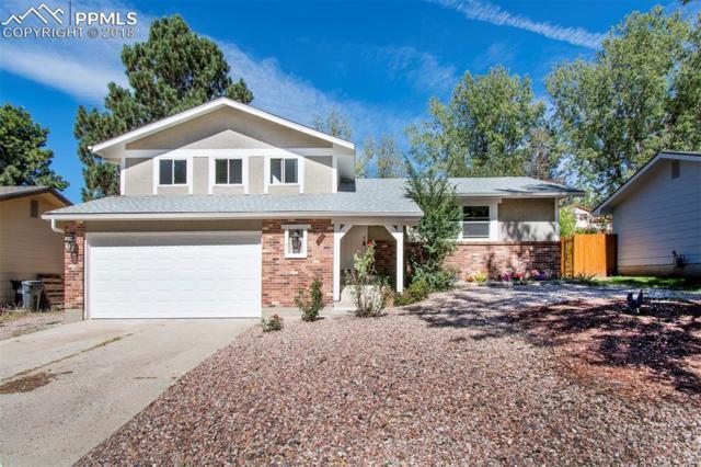 4256 N Hammock Drive, Colorado Springs, CO 80917 (#3273653) :: Fisk Team, RE/MAX Properties, Inc.