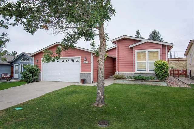 4695 Pine Marten Point, Colorado Springs, CO 80922 (#3279795) :: CC Signature Group