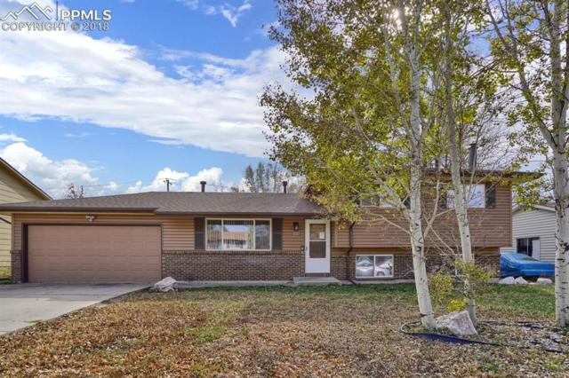 3107 Fireweed Drive, Colorado Springs, CO 80918 (#3280650) :: Venterra Real Estate LLC