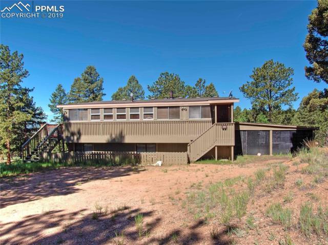 527 Golden Bell Lane, Divide, CO 80814 (#3281340) :: The Peak Properties Group