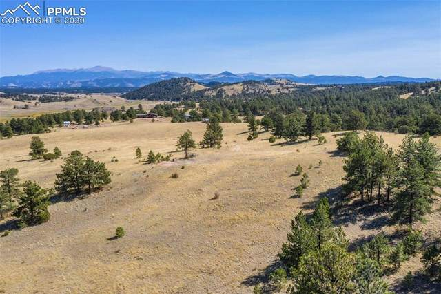 10658 Witcher Mountain Road, Guffey, CO 80820 (#3281893) :: The Treasure Davis Team