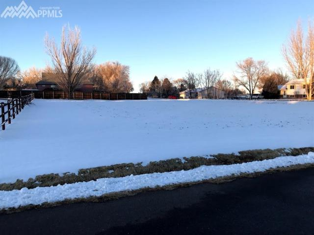 10630 Sunrise Road, Fountain, CO 80817 (#3282840) :: Action Team Realty