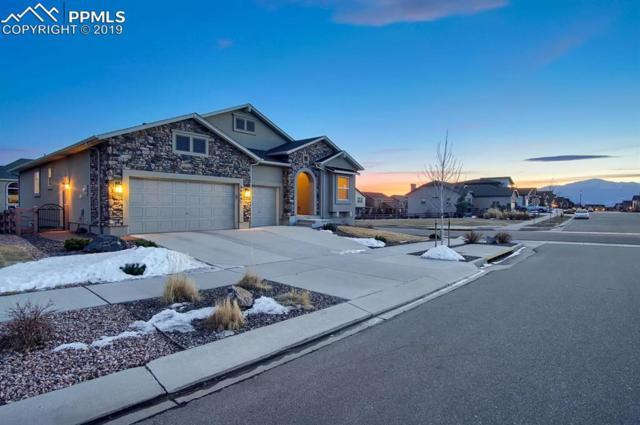 6009 Rowdy Drive, Colorado Springs, CO 80924 (#3285331) :: Tommy Daly Home Team