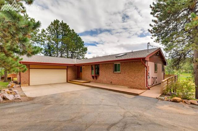172 Still Forest Lane, Woodland Park, CO 80863 (#3286619) :: 8z Real Estate
