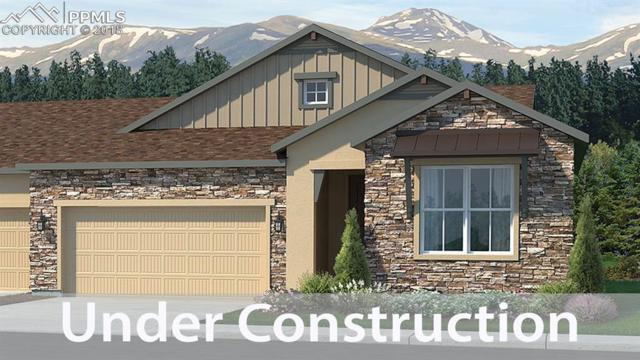 16463 Woodward Terrace, Monument, CO 80132 (#3296396) :: The Hunstiger Team