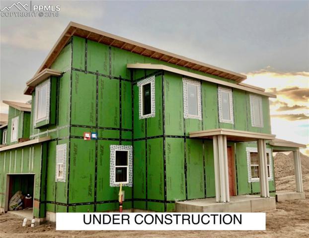 10068 Green Thicket Grove, Colorado Springs, CO 80924 (#3298267) :: Venterra Real Estate LLC