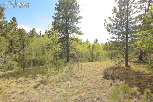3053 County 51 Road, Divide, CO 80814 (#3300061) :: The Daniels Team