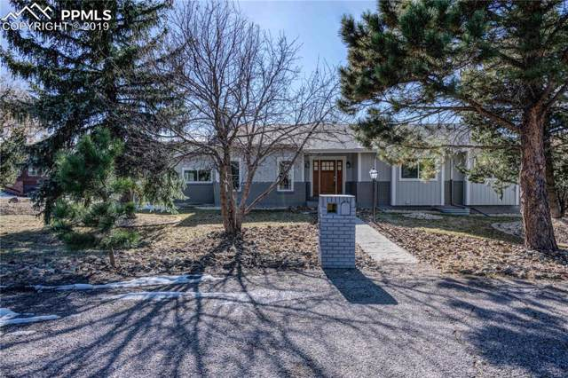170 Palm Springs Drive, Colorado Springs, CO 80921 (#3303775) :: The Kibler Group
