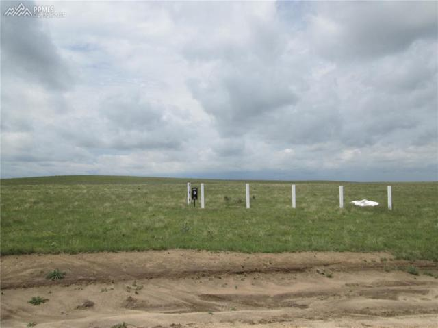 18310 Good Life View, Calhan, CO 80808 (#3305384) :: 8z Real Estate